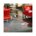 Elesgo Supergloss Freestone Flat Edge Laminate Flooring